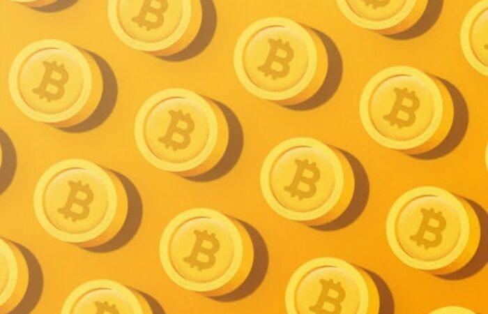 Pour survivre à l'Apocalypse, il vous faut absolument 1 bitcoin. Pourquoi tout le monde dit tout et n'importe quoi sur Bitcoin ?