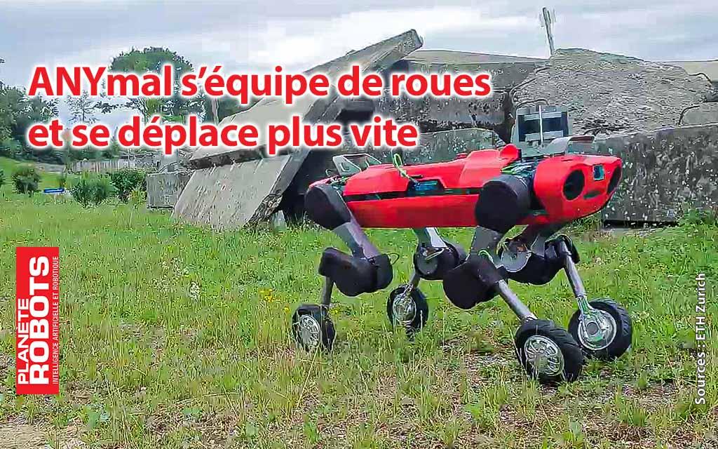 ANYmal applique la locomotion hybride