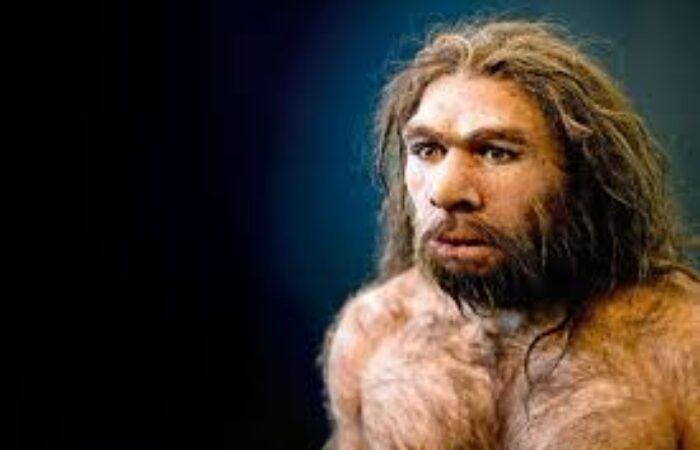 Si certains déclarent des formes graves de Covid-19, c'est à cause de … Néandertal