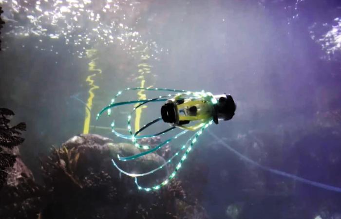 Un robot calamar qui se propulse par jets d'eau