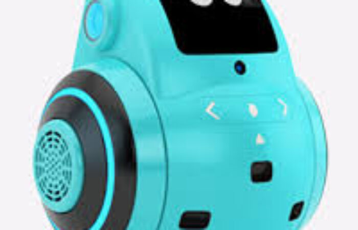 Robot maker Miko raises Rs 23 crore in pre-series B led by Stride Ventures