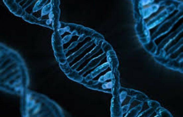 Covid-19 : Découverte d'un gène mystérieusement caché dans le virus